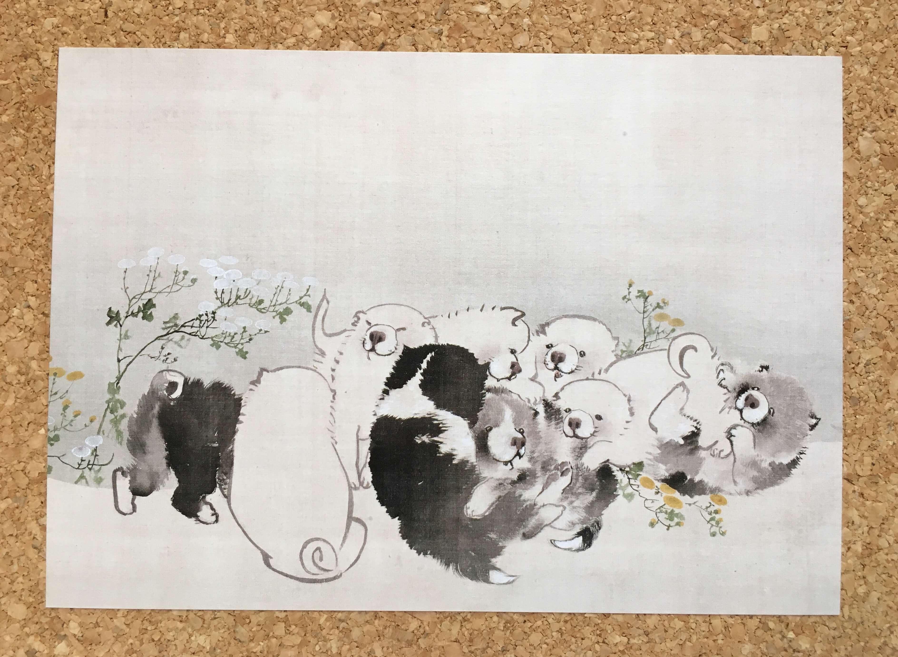 長沢蘆雪『菊花子犬図』
