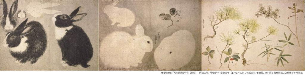 円山応挙 写生図鑑